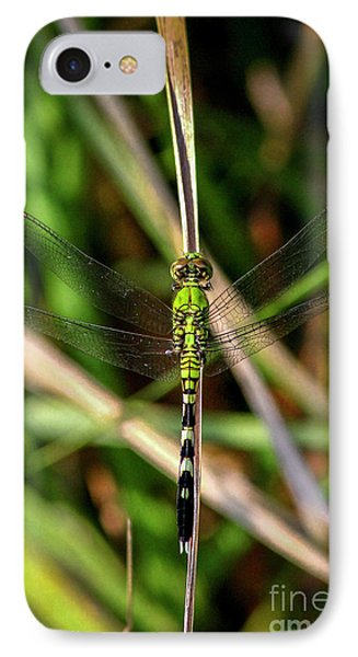 IPhone Case featuring the photograph Openminded Green Dragonfly Art by Reid Callaway