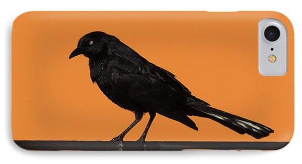 Orange And Black Bird IPhone Case