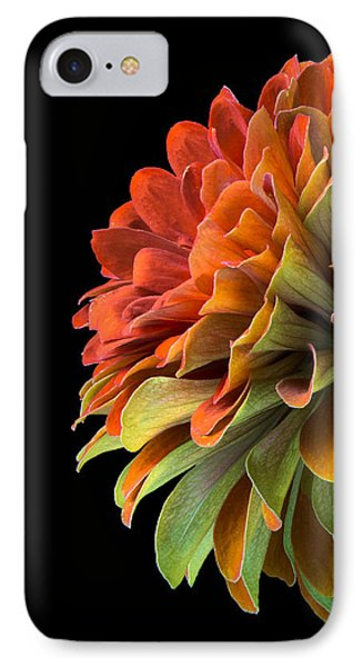 Orange And Green Zinnia  IPhone Case by Jim Hughes
