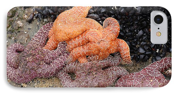 Orange And Purple Starfish IPhone Case