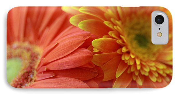 Orange And Yellow Daisies IPhone Case by Angela Murdock