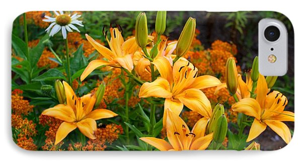IPhone Case featuring the photograph Orange Asiatic Lilies And Butterfly Weed by Kathryn Meyer