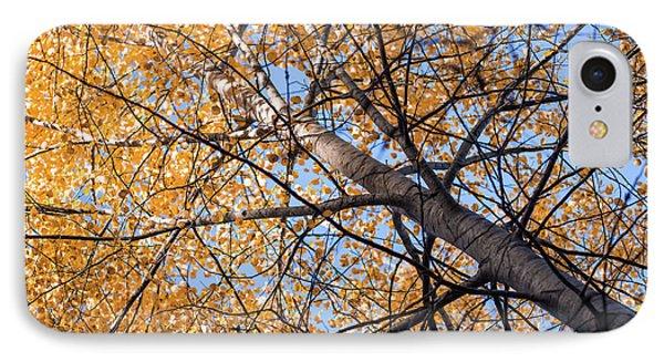 Orange Autumn Tree. IPhone Case