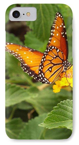 Orange Butterfly IPhone Case by Judi Saunders