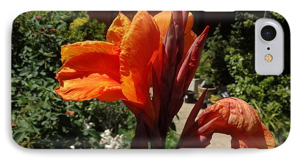 IPhone Case featuring the photograph Orange Canna Lily by Rod Ismay