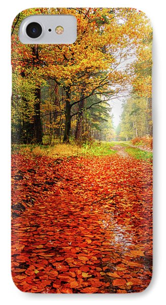 IPhone Case featuring the photograph Orange Carpet by Dmytro Korol