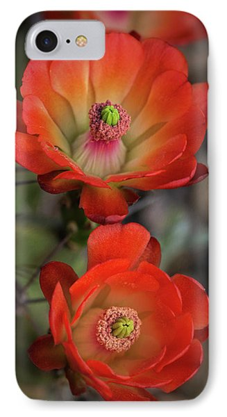 IPhone Case featuring the photograph Orange Claret Dreams  by Saija Lehtonen