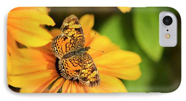 IPhone Case featuring the photograph Orange Crescent Butterfly by Christina Rollo