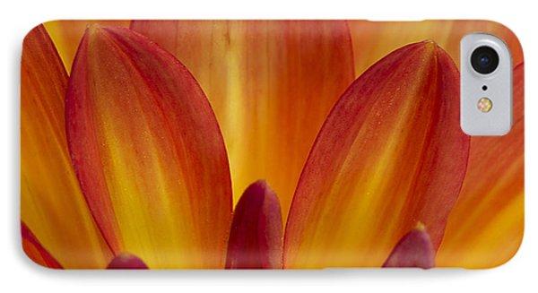 Orange Dahlia Petals IPhone Case