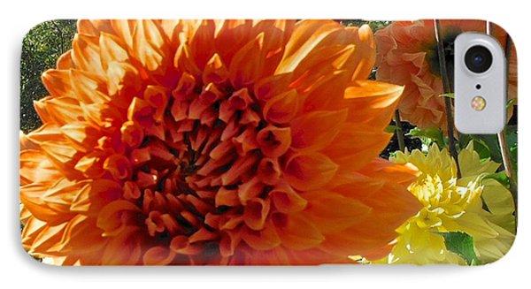 Orange Dahlia Suncrush  IPhone Case
