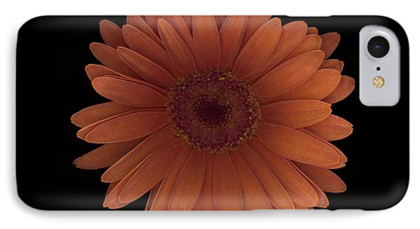Orange Daisy Front IPhone Case by Heather Kirk