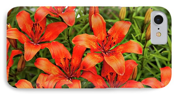 IPhone Case featuring the photograph Orange Day Lillies by Mary Jo Allen