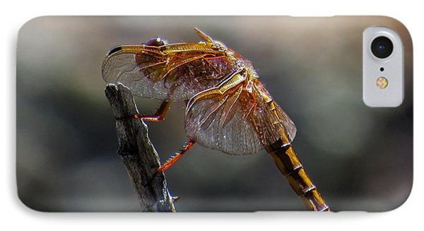 Dragonfly 1 IPhone Case