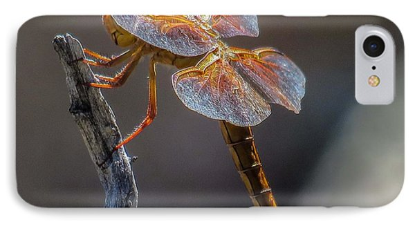 Dragonfly 2 IPhone Case