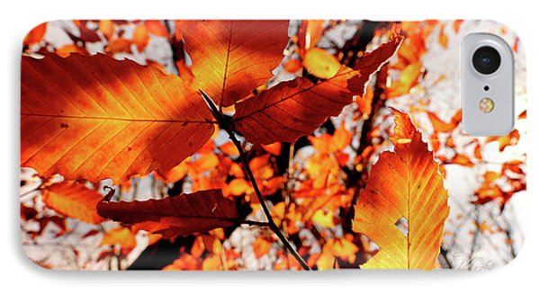 IPhone Case featuring the photograph Orange Fall Leaves by Meta Gatschenberger