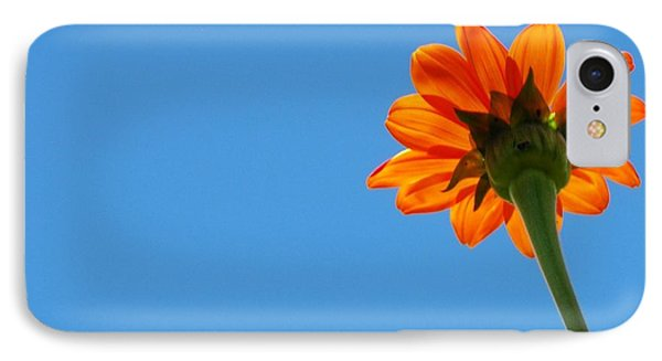 IPhone Case featuring the photograph Orange Flower On Blue Sky by Debbie Karnes