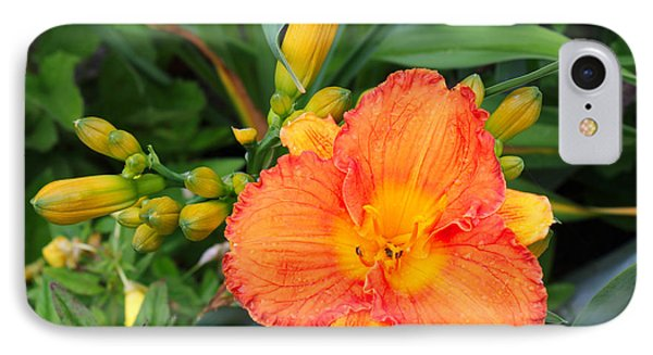 Orange Gladiola Flower And Buds IPhone Case by Corey Ford