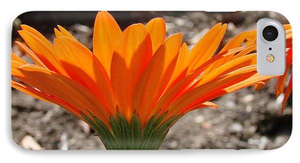 Orange Glory IPhone Case