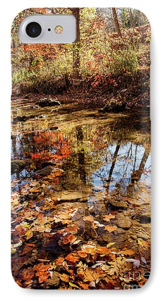 IPhone Case featuring the photograph Orange Leaves by Iris Greenwell