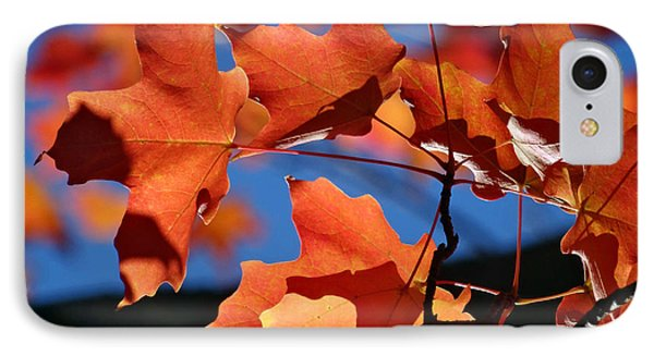 Orange Leaves IPhone Case by Mikki Cucuzzo