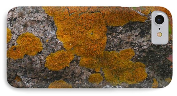 IPhone Case featuring the photograph Orange Lichen On Granite by Mary Bedy
