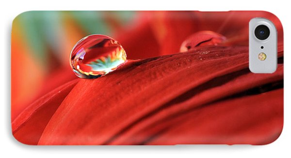 Orange Petals And Water Drops IPhone Case by Angela Murdock