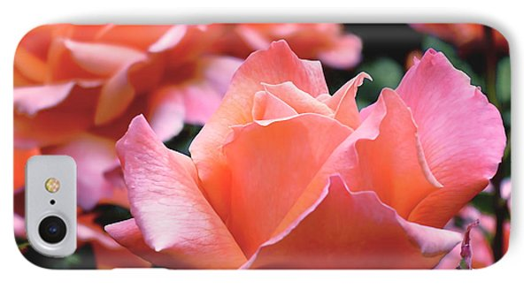 Orange-pink Roses  IPhone Case by Rona Black