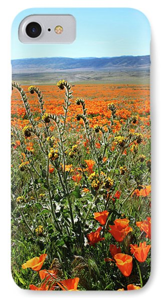 Orange Poppies And Fiddleneck- Art By Linda Woods IPhone Case by Linda Woods