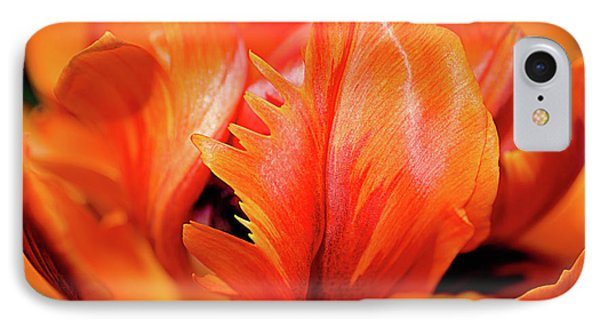 IPhone Case featuring the photograph Orange Princess Tulip Natures Abstract by Julie Palencia