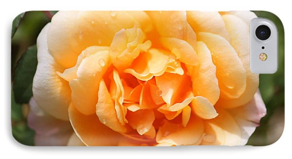 Orange Rose Square Phone Case by Carol Groenen