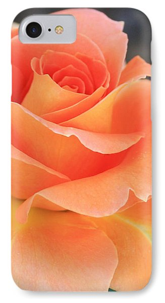 Orange Sherbert IPhone Case by Marna Edwards Flavell