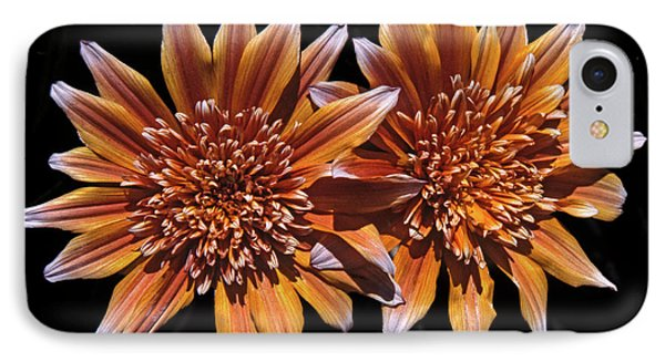Orange South African Flowers IPhone Case by Morris Finkelstein