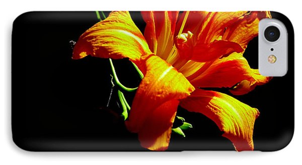 IPhone Case featuring the photograph Orange Splendor by Fred Wilson