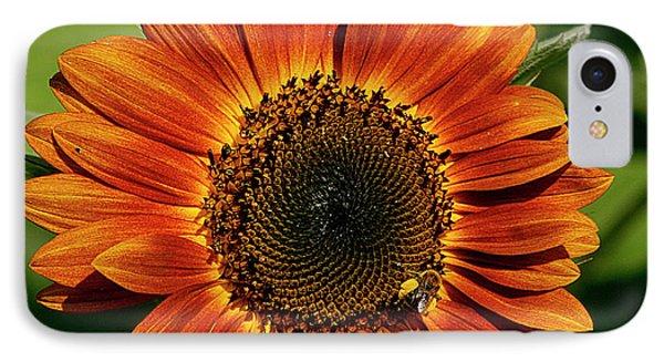 Orange Sunflower IPhone Case