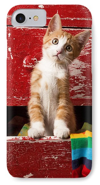 Orange Tabby Kitten In Red Drawer  Phone Case by Garry Gay