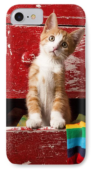 Orange Tabby Kitten In Red Drawer  IPhone Case by Garry Gay