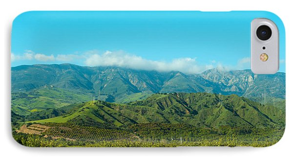 Orange Tree Grove, Santa Paula, Ventura IPhone Case by Panoramic Images