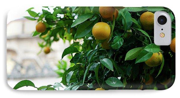 IPhone Case featuring the photograph Orange Tree by Lorraine Devon Wilke