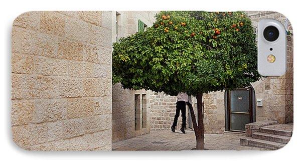Orange Tree Phone Case by Marji Lang