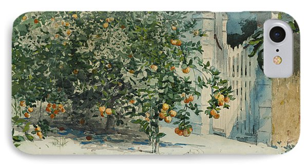 Orange Trees And Gate IPhone Case by Winslow Homer