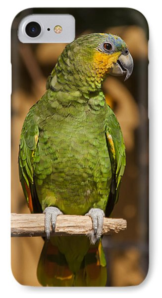 Orange-winged Amazon Parrot IPhone Case by Adam Romanowicz