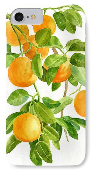 Oranges On A Branch IPhone Case by Sharon Freeman