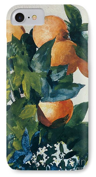 Oranges On A Branch Phone Case by Winslow Homer