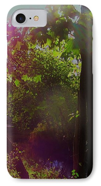 Orbs In The Forest IPhone Case