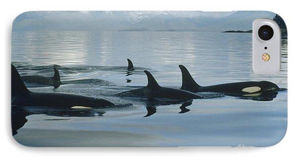 Orca Pod Johnstone Strait Canada IPhone Case by Flip Nicklin