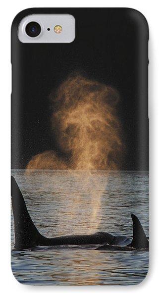 Orcas Ocinus Orca Spouting Alaska Phone Case by Hiroya Minakuchi