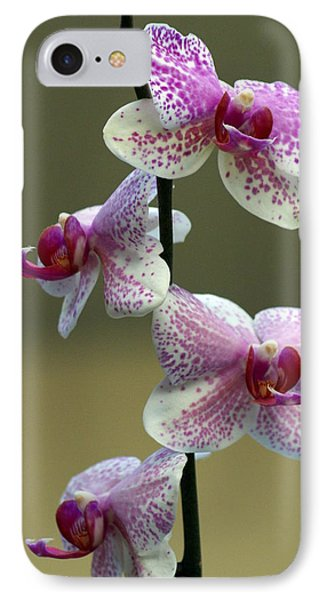 Orchid 16 Phone Case by Marty Koch
