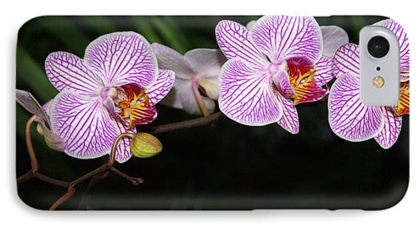 Orchid 2 Phone Case by Marty Koch