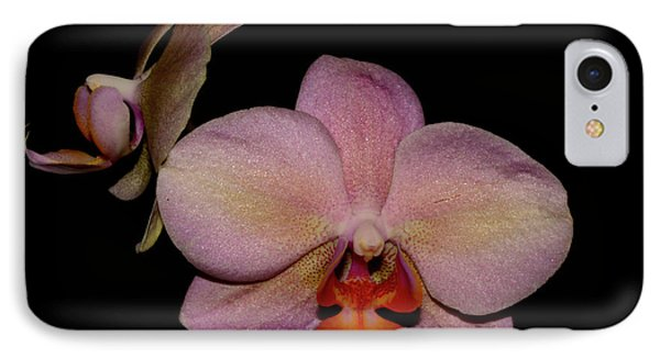 Orchid 2016 3 Phone Case by Robert Morin