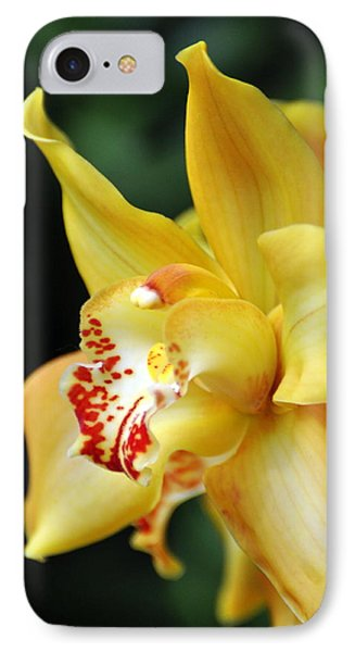 Orchid 24 Phone Case by Marty Koch